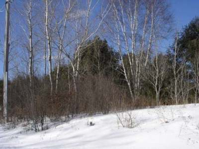 Merrill Residential Lots & Land For Sale: Lot 4 Doering Dr