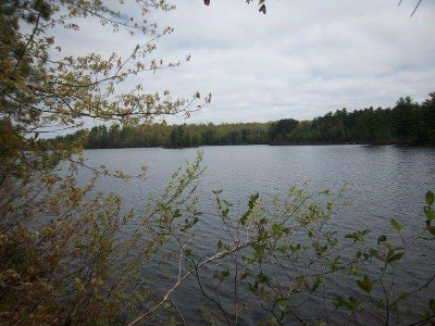 Lac Du Flambeau WI Residential Lots & Land For Sale: $69,800