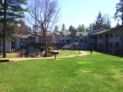 Minocqua Condo/Townhouse For Sale: 8250 Northern Rd #113