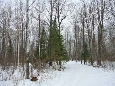 Residential Lots & Land For Sale: On Nicolet Highlands Rd