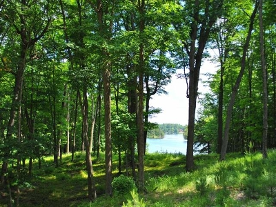 Residential Lots & Land For Sale: On Big Lake Rd E #Lot 3