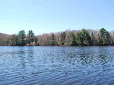 Forest County, Iron Wi County, Langlade County, Lincoln County, Oneida County, Vilas County Single Family Home For Sale: 2611 Lost Lake Ln