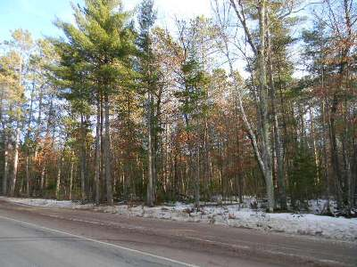 Elcho WI Residential Lots & Land For Sale: $39,900