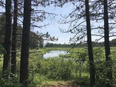Minocqua WI Residential Lots & Land For Sale: $293,900