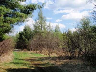 Eagle River Residential Lots & Land For Sale: On Adams Rd