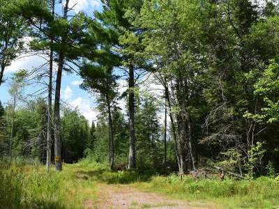 Residential Lots & Land For Sale: 3816 Tre Fiske Rd