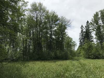 Oneida County, Lincoln County, Price County Residential Lots & Land For Sale: 148 Ac. Sunset Point Rd