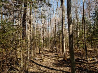 Oneida County, Lincoln County, Price County Residential Lots & Land For Sale: On Kansas Ave