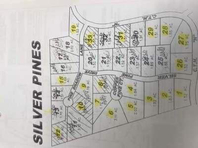 Rhinelander Residential Lots & Land For Sale: Lot 1 Silver Pine Dr