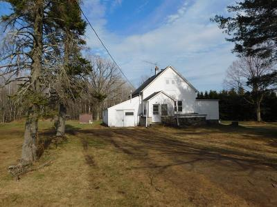 Tomahawk Single Family Home For Sale: N8720 Cth E