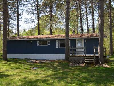 Forest County, Iron Wi County, Langlade County, Lincoln County, Oneida County, Vilas County Single Family Home For Sale: 4646 Sportsman Ln #8