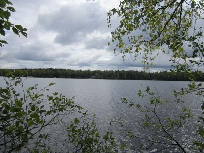Minocqua WI Residential Lots & Land For Sale: $99,500