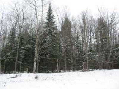 Lac Du Flambeau Single Family Home For Sale: On Middle Sugarbush Ln