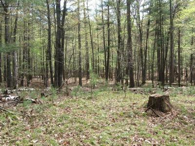 Rhinelander Residential Lots & Land For Sale: On Bass Lake Loop