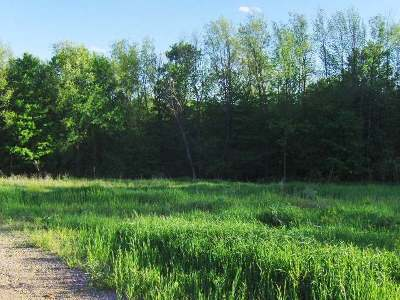 Residential Lots & Land For Sale: Lot 13 Thornapple Grade
