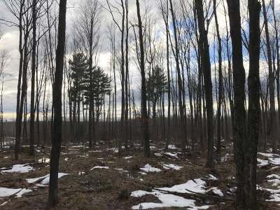 Oneida County Residential Lots & Land For Sale: 605 Ac. Price County Rd