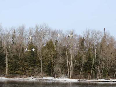 Residential Lots & Land For Sale: Lot 3 Hwy 107