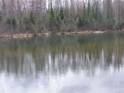 Cassian WI Residential Lots & Land For Sale: $54,900