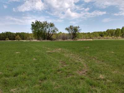 Residential Lots & Land For Sale: 40 Acres Vascheau Rd
