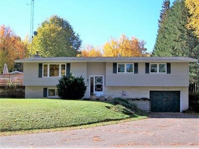Phillips WI Single Family Home For Sale: $445,000