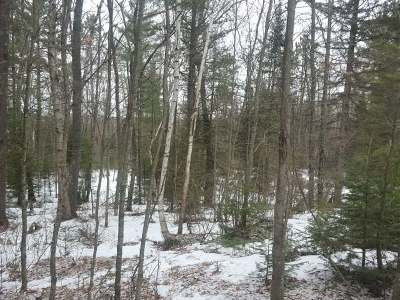 Eagle River WI Residential Lots & Land For Sale: $17,900
