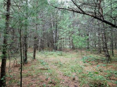 Eagle River WI Residential Lots & Land For Sale: $19,900