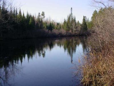 Rhinelander Residential Lots & Land For Sale: On Pelican Ranch Rd