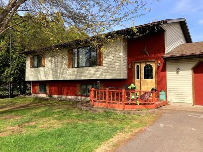 Park Falls Single Family Home For Sale: 1038 Hines Ln