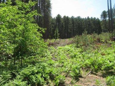 Rhinelander Residential Lots & Land For Sale: 6 Ac On Burlington Pl