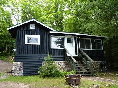 Forest County, Iron Wi County, Langlade County, Lincoln County, Oneida County, Vilas County Single Family Home For Sale: 14106 Adelaide Dr