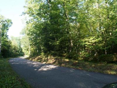 Residential Lots & Land For Sale: On Stearns Lake Rd