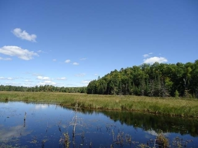 Minocqua WI Residential Lots & Land For Sale: $59,500