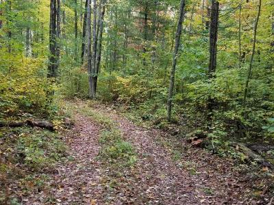 Lac Du Flambeau WI Residential Lots & Land For Sale: $49,000