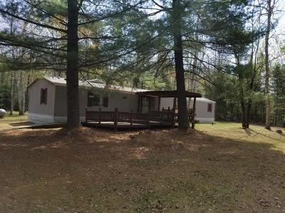 Lake Tomahawk Single Family Home For Sale: 6560 Pinehurst Dr