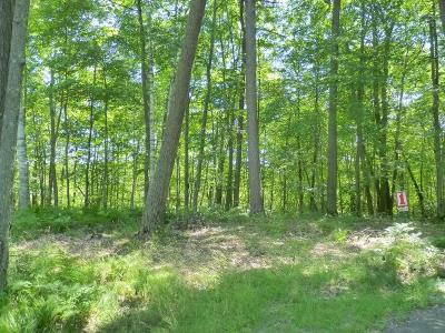 Forest County, Iron Wi County, Langlade County, Lincoln County, Oneida County, Vilas County Condo/Townhouse For Sale: 8551 Kenwood Terrace #Site #5