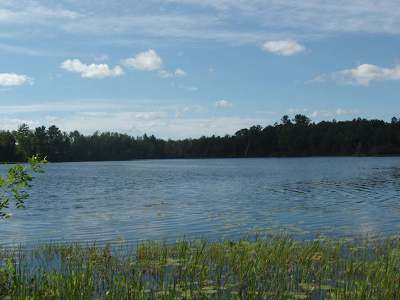 Fifield Residential Lots & Land For Sale: On Pixley Wilderness Shores