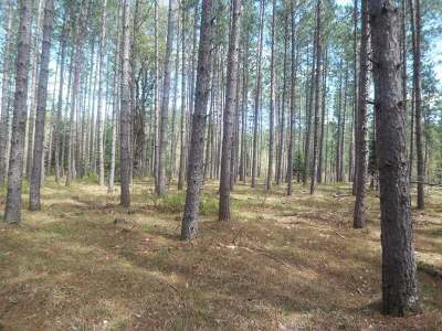 Residential Lots & Land For Sale: On Little Portage Lake Rd
