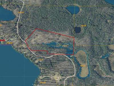 Residential Lots & Land For Sale: On Pardee Lake Ln E