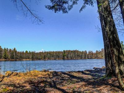 Lake Tomahawk WI Residential Lots & Land For Sale: $235,000