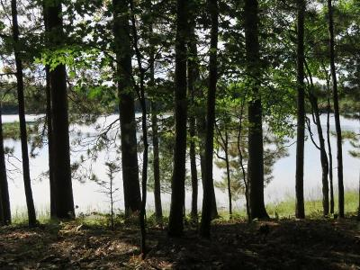 Sugar Camp Residential Lots & Land For Sale: 4151 Red Pine Dr