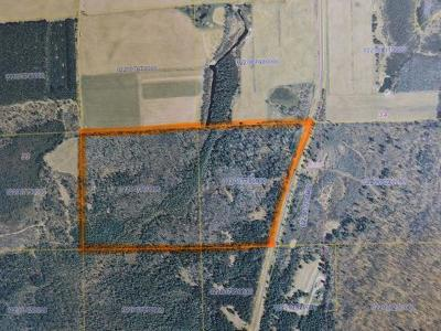 Crandon Residential Lots & Land For Sale: On Hwy 55