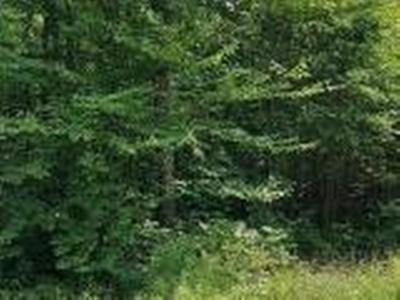 Oneida County, Lincoln County, Price County Residential Lots & Land For Sale: Near Cth Rr