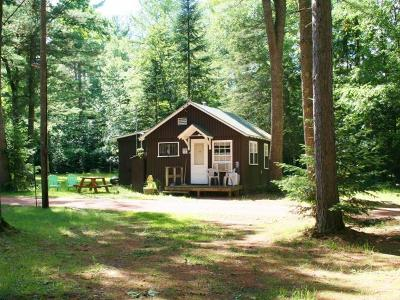 Forest County, Iron Wi County, Langlade County, Lincoln County, Oneida County, Vilas County Single Family Home For Sale: 1173 Pinehurst Ct #10