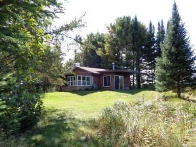 Forest County, Iron Wi County, Langlade County, Lincoln County, Oneida County, Vilas County Single Family Home For Sale: 12963 Manhardt Rd