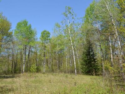 Tomahawk WI Residential Lots & Land For Sale: $69,900