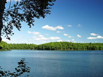 Lake Tomahawk WI Residential Lots & Land For Sale: $185,000