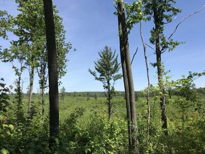 Residential Lots & Land For Sale: 579 Ac. Hwy 8