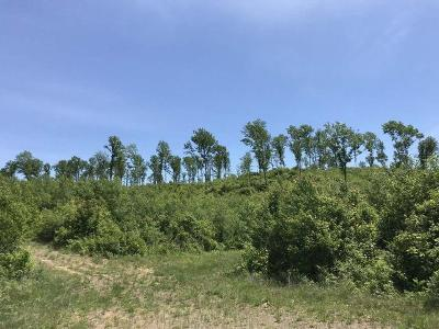 Oneida County, Lincoln County, Price County Residential Lots & Land For Sale: 440 Ac. Mountain Dr