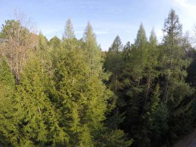 Three Lakes Residential Lots & Land Active O/C: Off Crystal Creek Ln