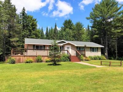 Three Lakes Single Family Home For Sale: 259 Wesley Rd